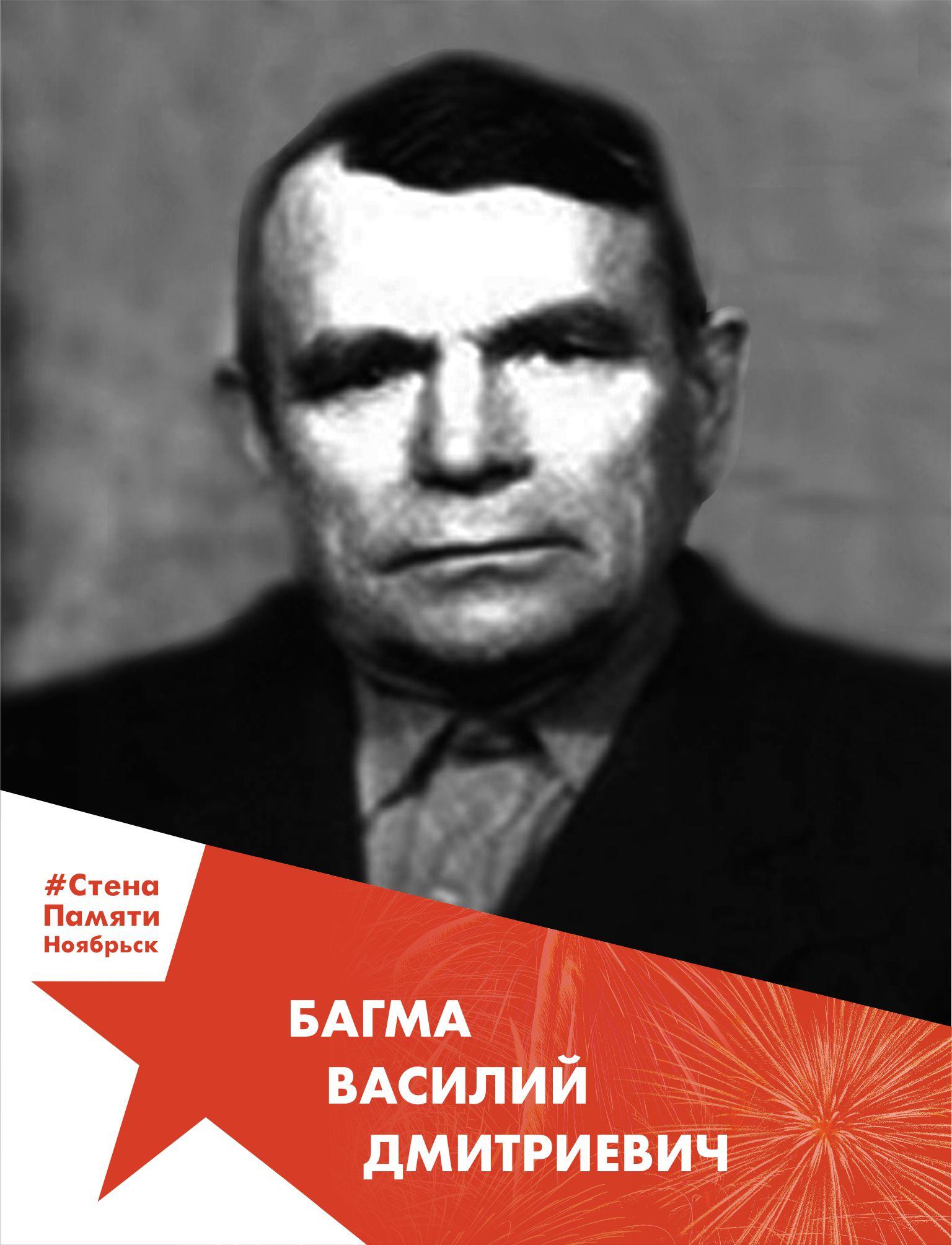 Багма Василий Дмитриевич
