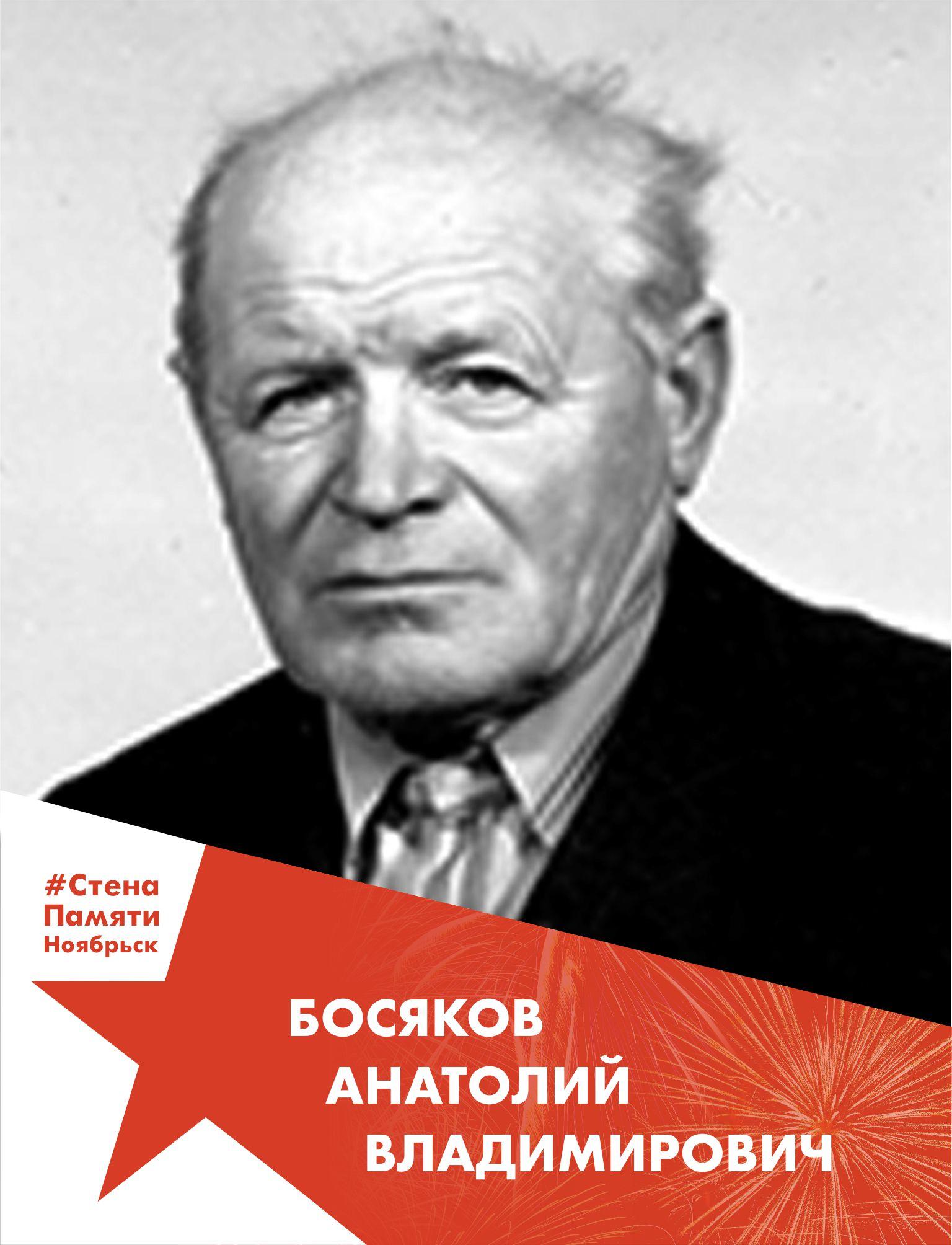 Босяков Анатолий Владимирович