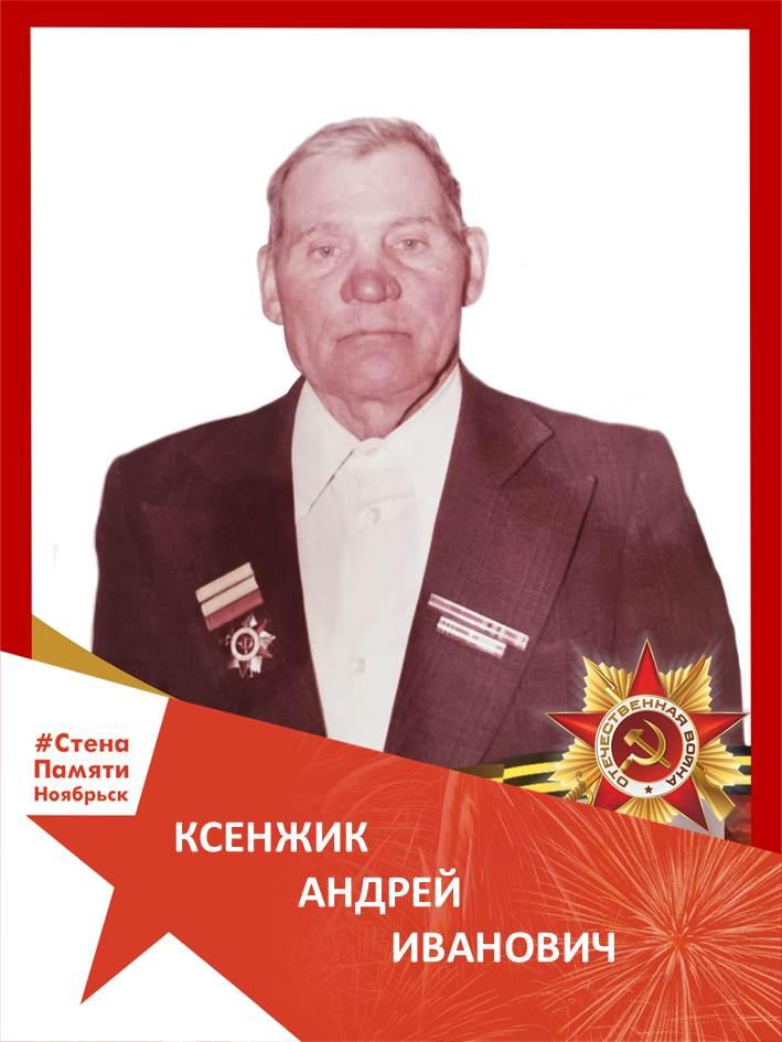 Ксенжик Андрей Иванович