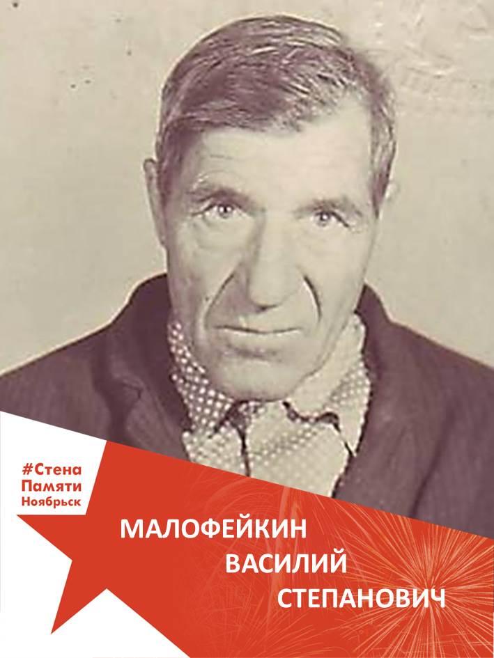 Малофейкин Василий Степанович