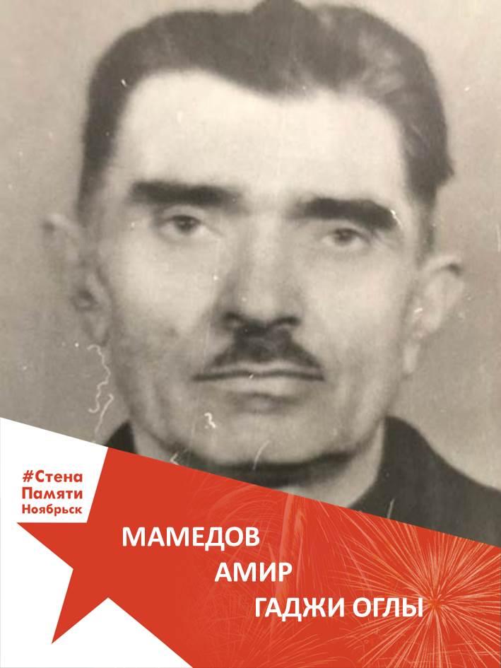 Мамедов Амир Гаджи Оглы