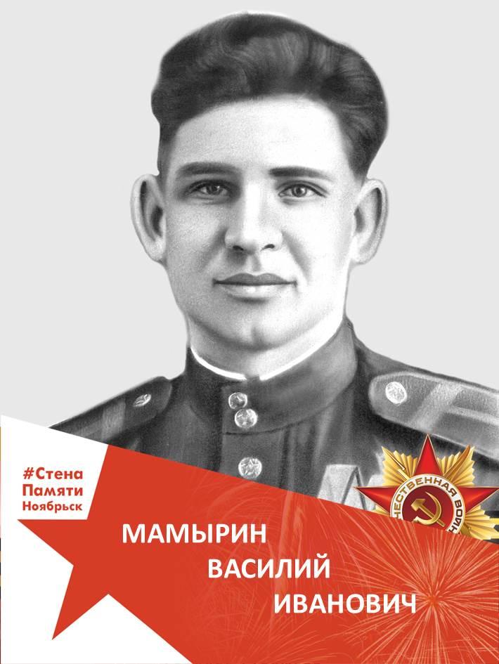 Мамырин Василий Иванович