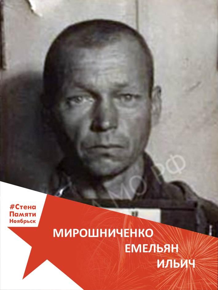 Мирошниченко Емельян Ильич