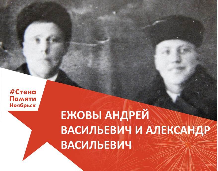 Ежовы Андрей и Александр
