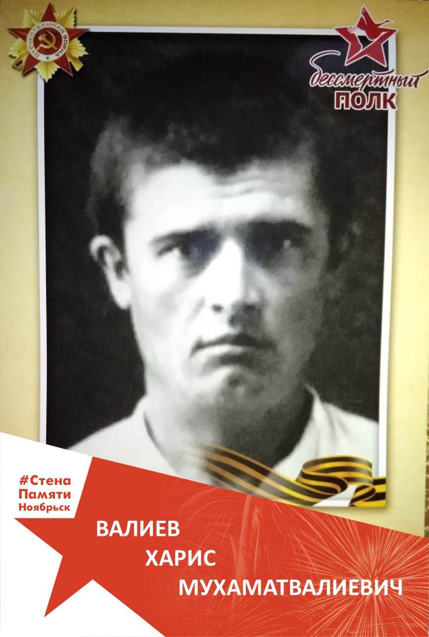 Валиев Харис Мухаматвалиевич