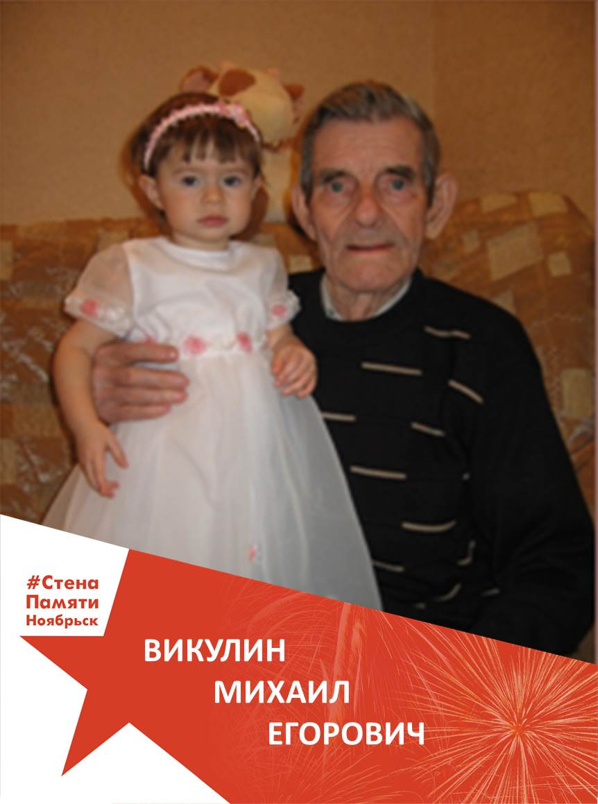 Викулин Михаил Егорович