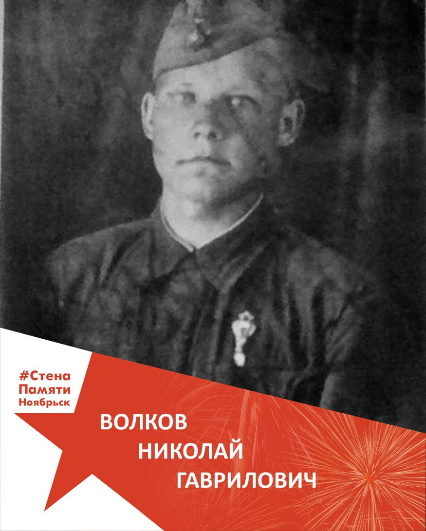 Волков Николай Гаврилович