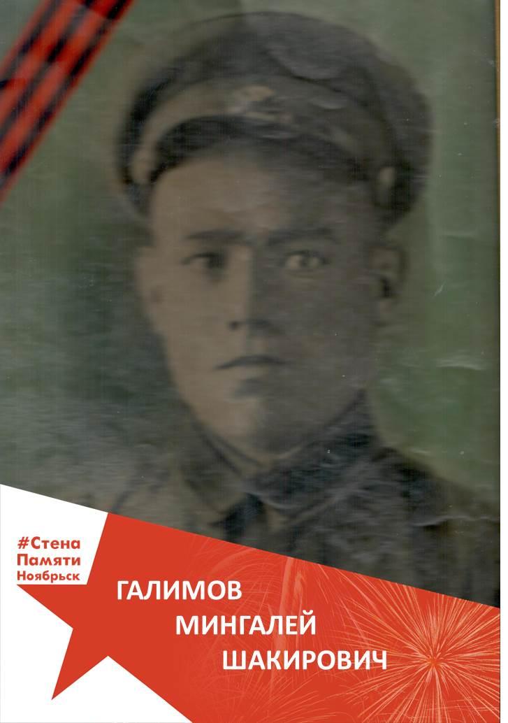 Галимов Мингалей Шакирович