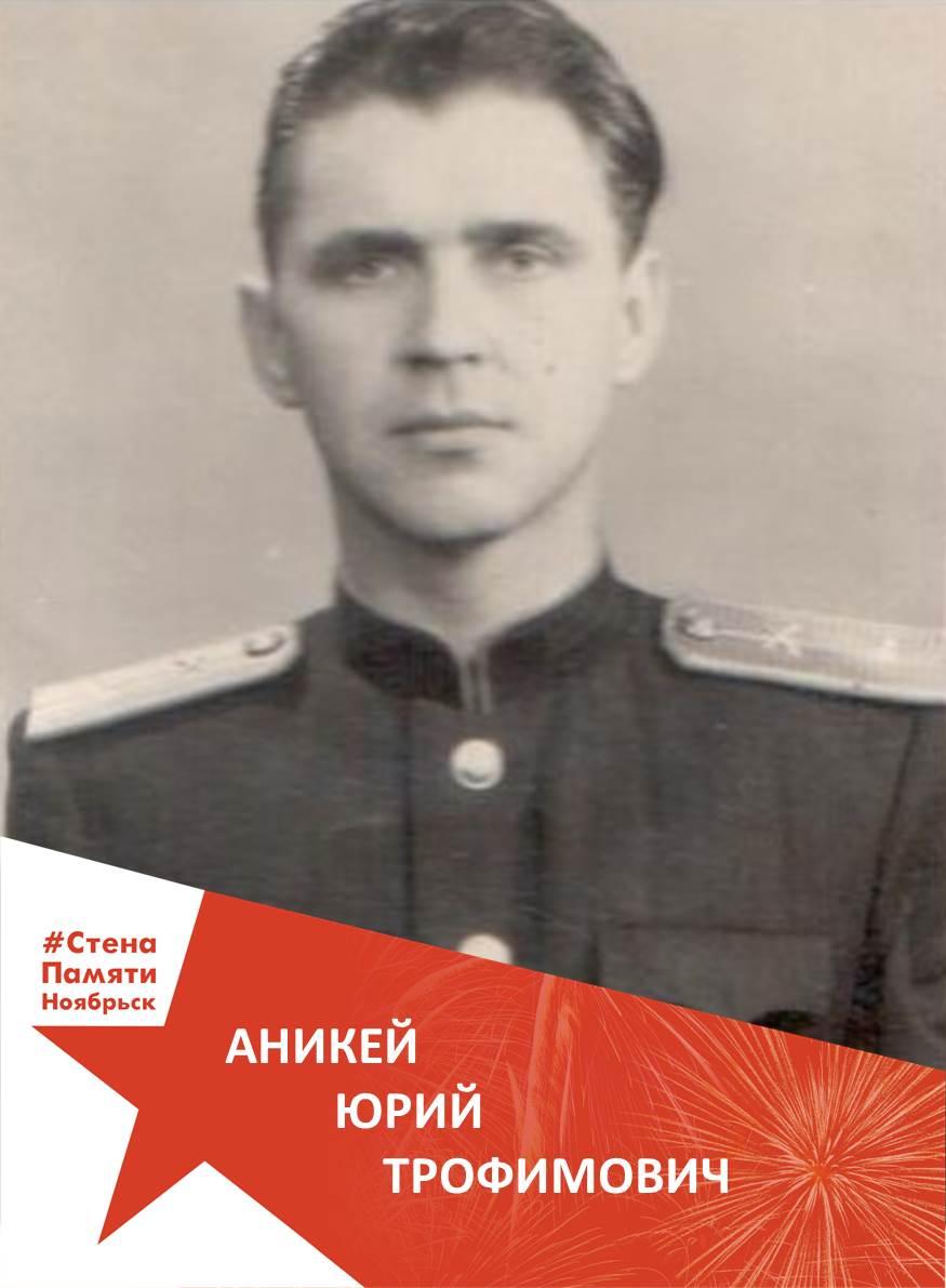 Аникей Юрий Трофимович