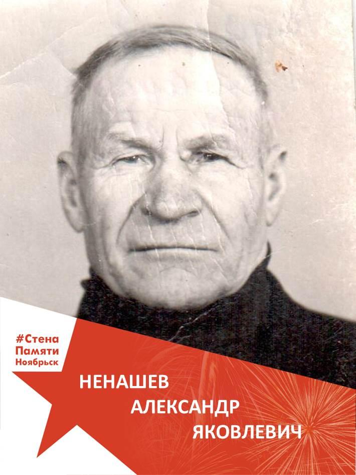 Ненашев Александр Яковлевич