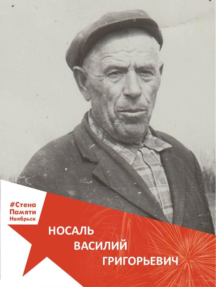 Носаль Василий Григорьевич