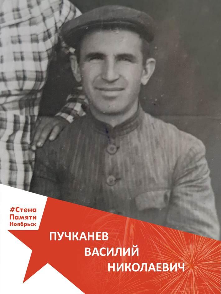 Пучканев Василий Николаевич