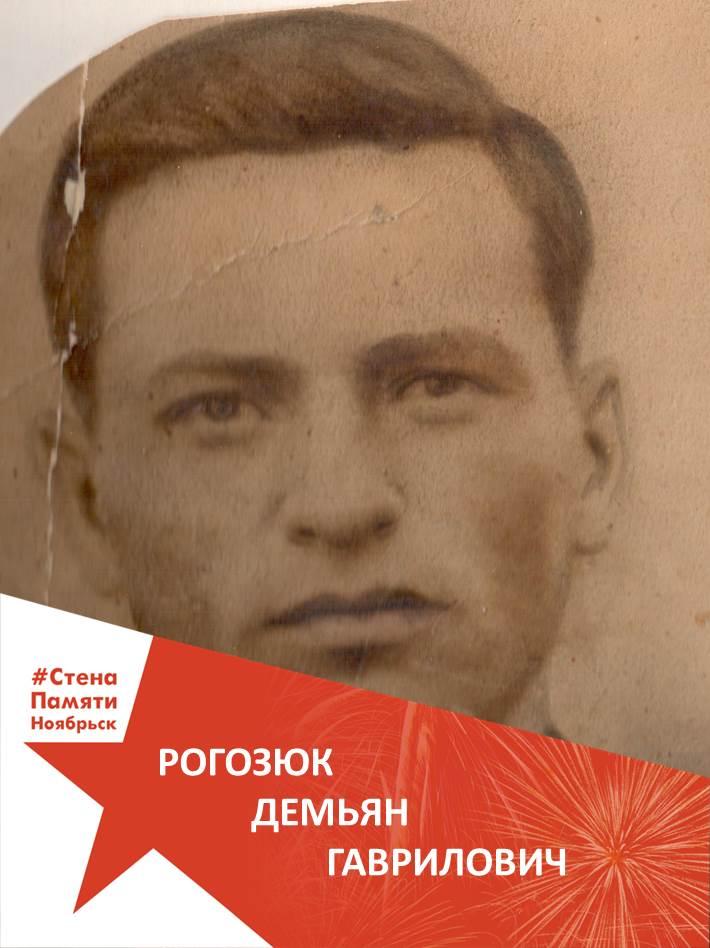 Рогозюк Демьян Гаврилович
