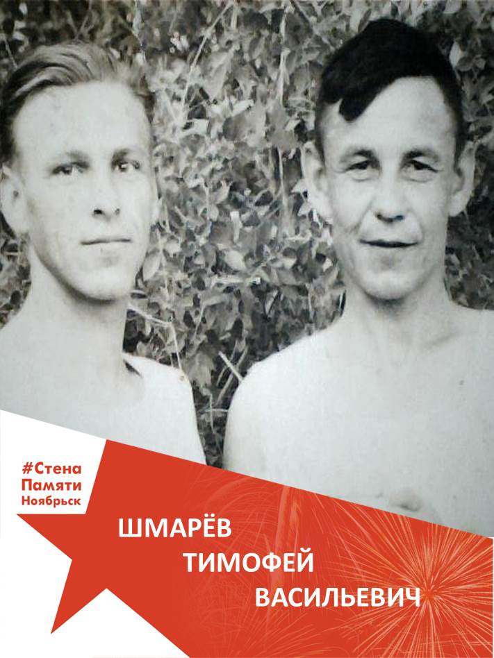 Шмарёв Тимофей Васильевич