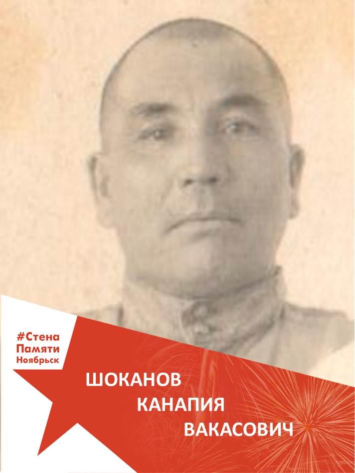 Шоканов Канапия Вакасович