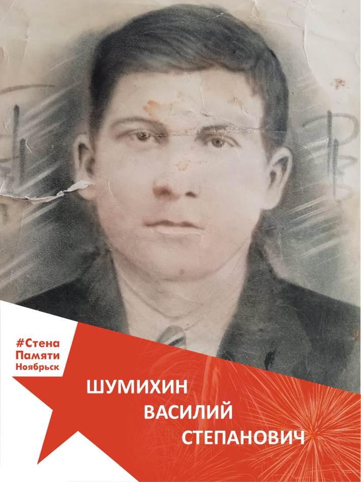 Шумихин Василий Степанович